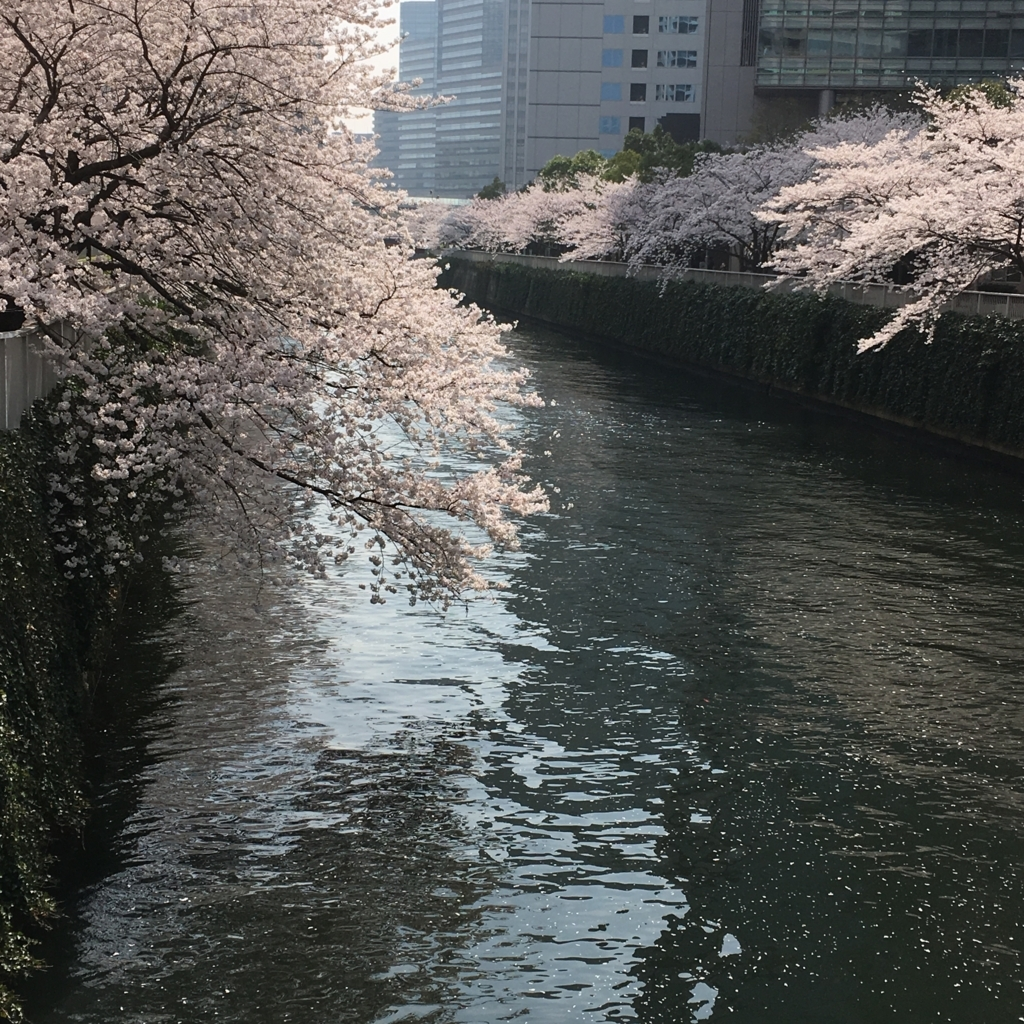 f:id:gotanda-kikou:20180328195411j:plain