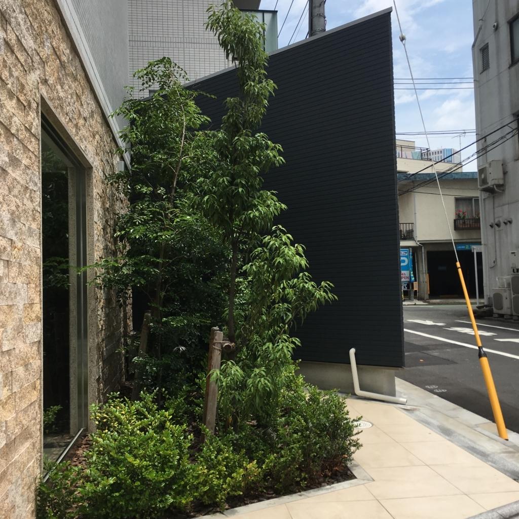 f:id:gotanda-kikou:20180609174638j:plain