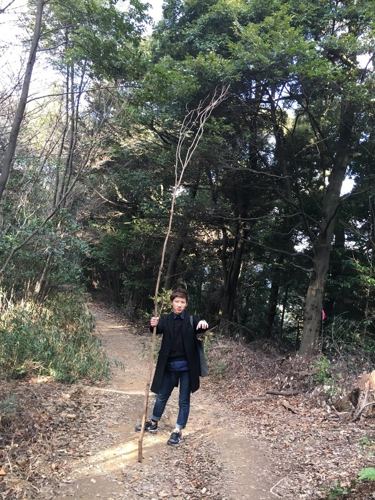 f:id:gototoshiyuki5:20190129230237j:plain