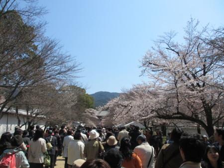 f:id:gotouma:20120408111343j:image