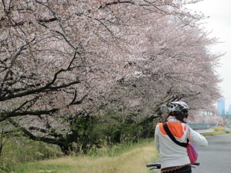f:id:gotouma:20120415101447j:image