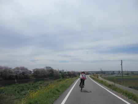 f:id:gotouma:20120415102343j:image