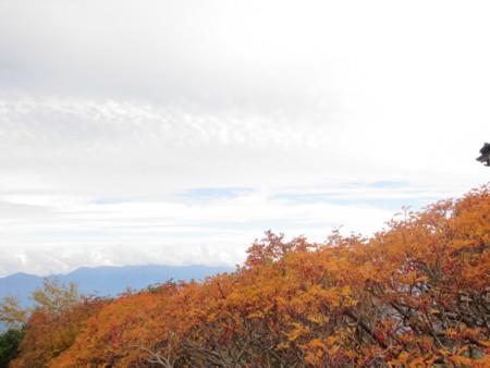 f:id:gotouma:20121006142112j:image