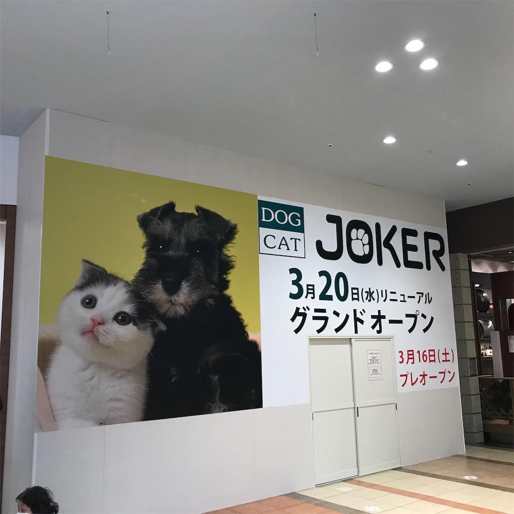 f:id:goukakuhonpo:20190204145322j:image