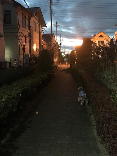 f:id:goukakuhonpo:20190212182415j:image