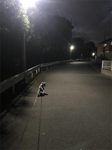 f:id:goukakuhonpo:20190212184145j:image