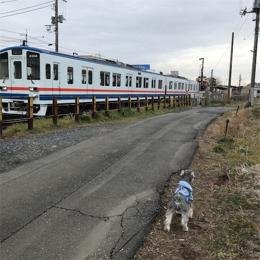 f:id:goukakuhonpo:20190213094813j:image