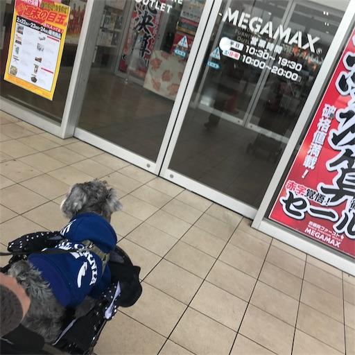 f:id:goukakuhonpo:20190222135931j:image