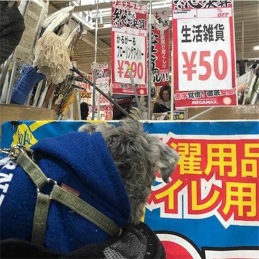 f:id:goukakuhonpo:20190222140552j:image