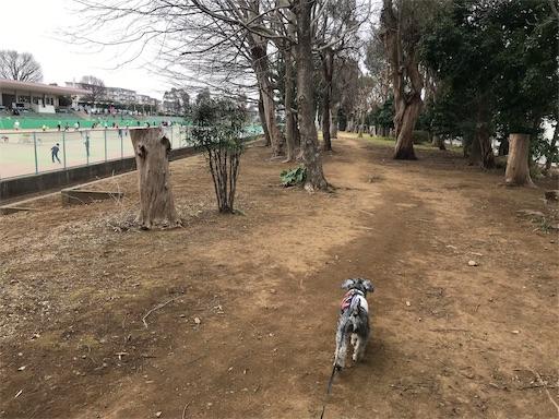 f:id:goukakuhonpo:20190226131127j:image