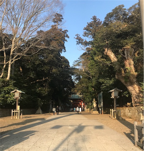 f:id:goukakuhonpo:20190317153608j:image