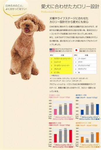 f:id:goukakuhonpo:20190322112606j:image