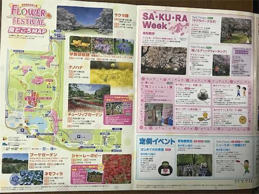 f:id:goukakuhonpo:20190322233436j:image