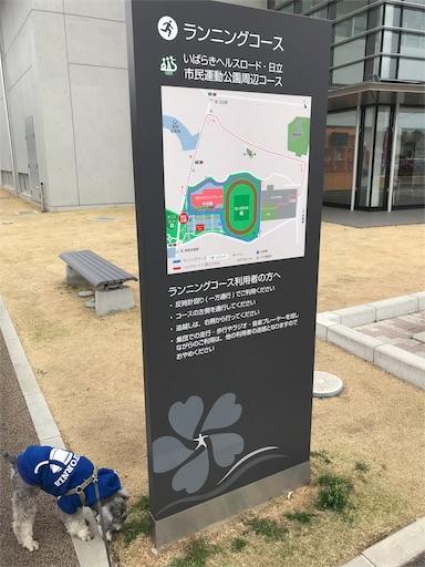 f:id:goukakuhonpo:20190326115003j:image