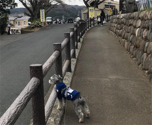 f:id:goukakuhonpo:20190327124634j:image