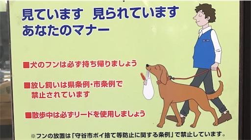 f:id:goukakuhonpo:20190328143711j:image