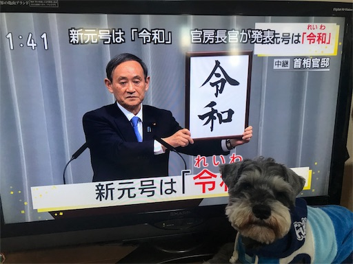 f:id:goukakuhonpo:20190401114939j:image