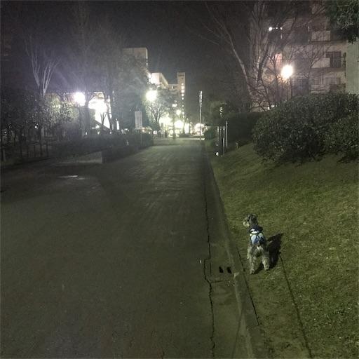 f:id:goukakuhonpo:20190405203601j:image