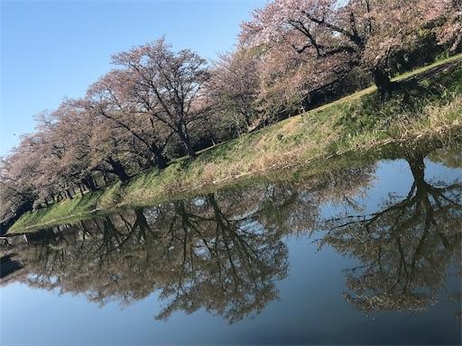 f:id:goukakuhonpo:20190416094334j:image