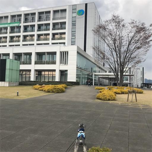 f:id:goukakuhonpo:20190426173210j:image
