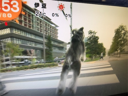f:id:goukakuhonpo:20190508111400j:image