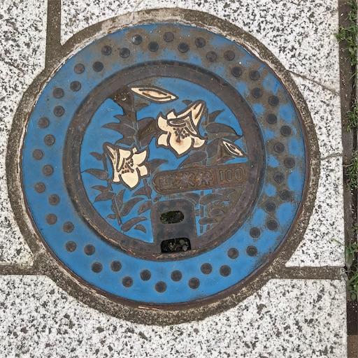 f:id:goukakuhonpo:20190511111439j:image