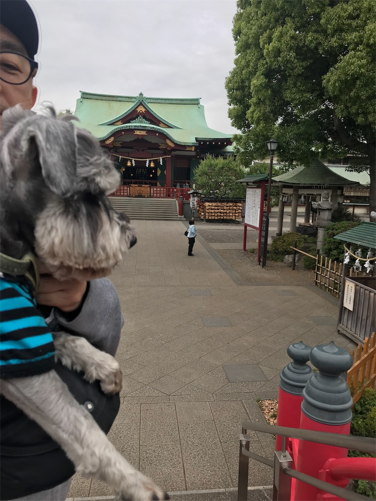 f:id:goukakuhonpo:20190515113856j:image