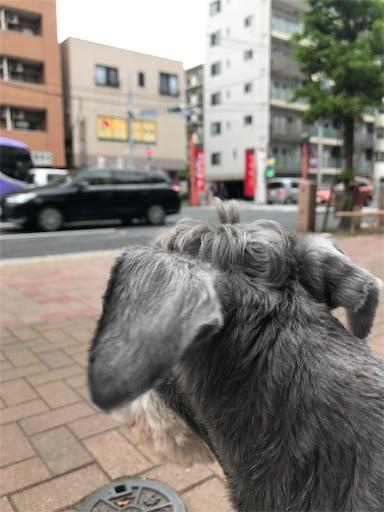 f:id:goukakuhonpo:20190516111425j:image