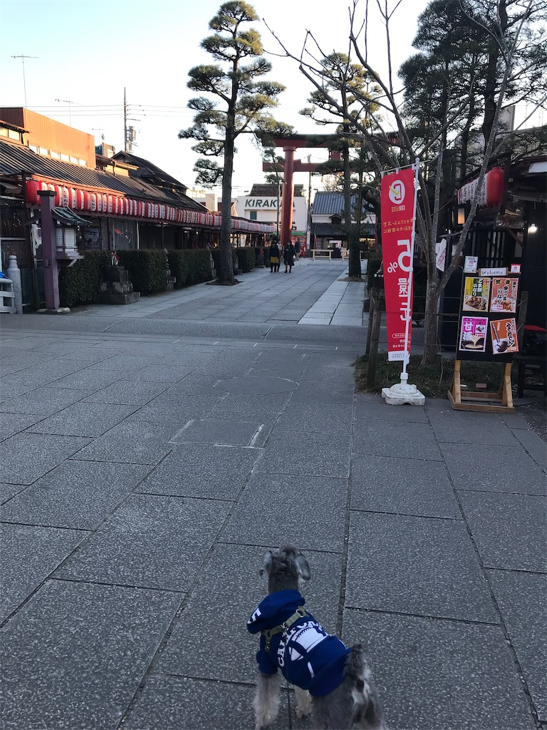f:id:goukakuhonpo:20200214012631j:image