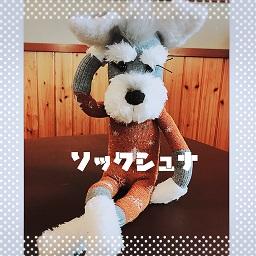 f:id:goukakuhonpo:20200227093117j:plain