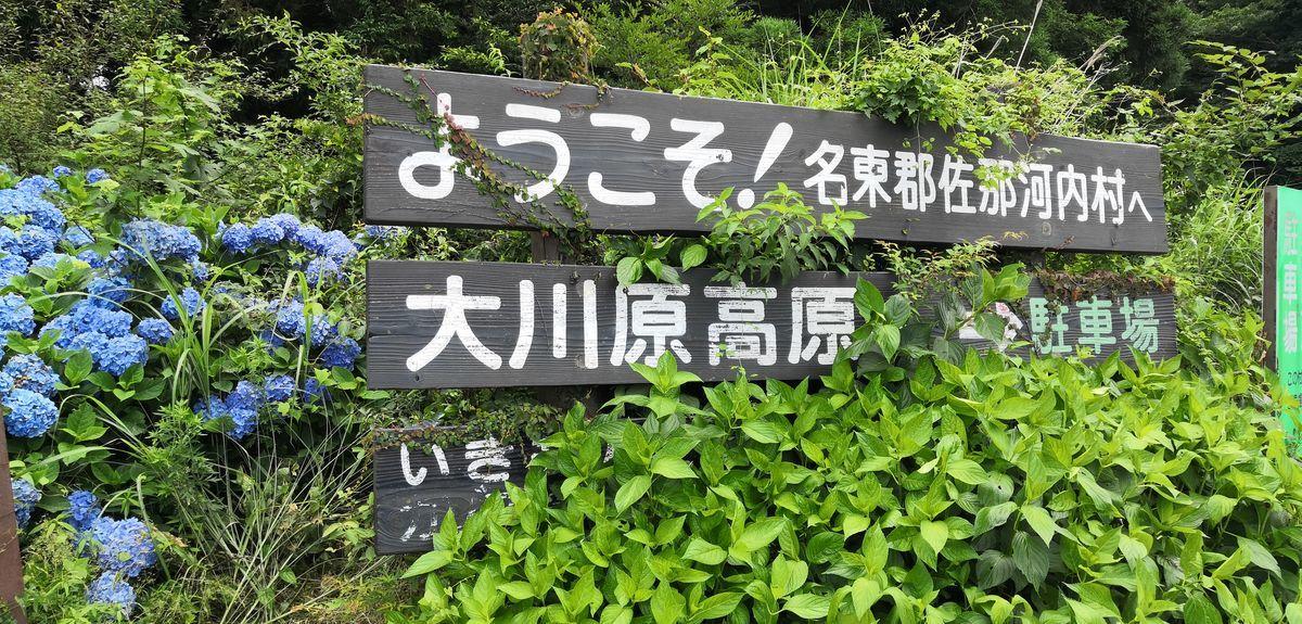 f:id:gouriki2020:20200719201040j:plain