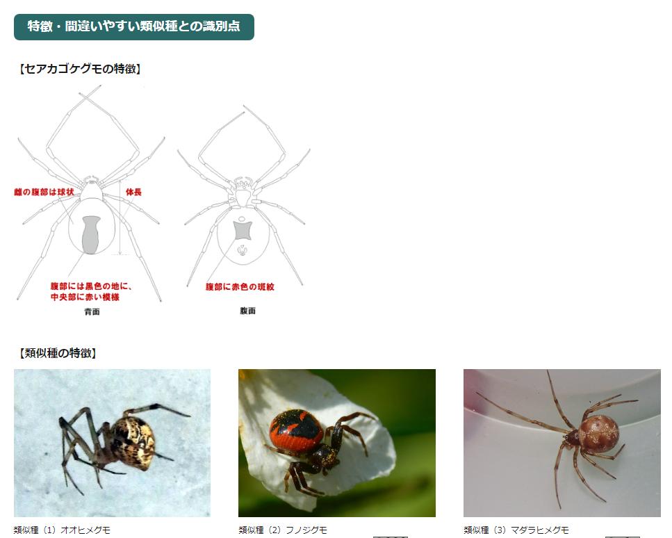f:id:gouriki2020:20200921220955p:plain