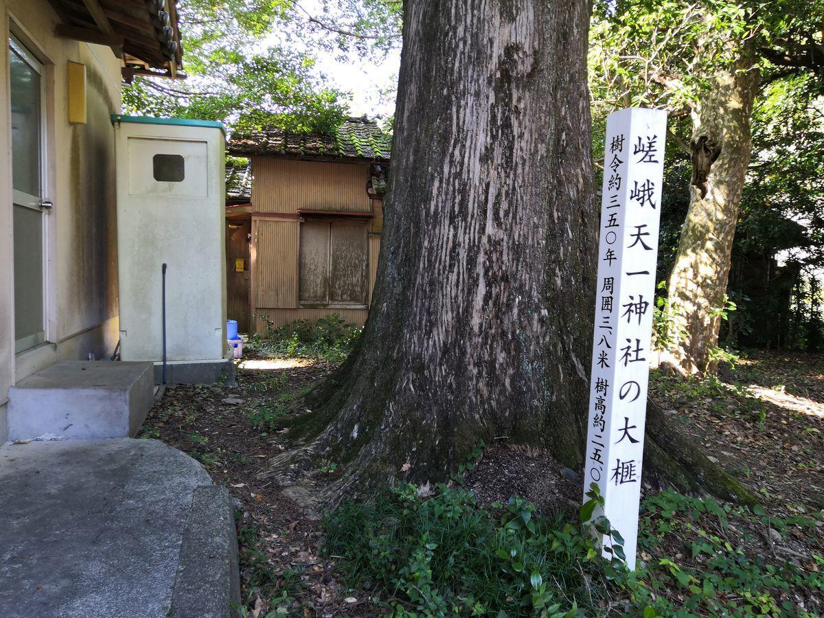 f:id:gouriki2020:20201113145221j:plain