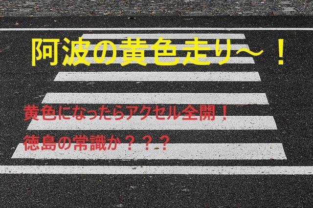 f:id:gouriki2020:20201212200958j:plain