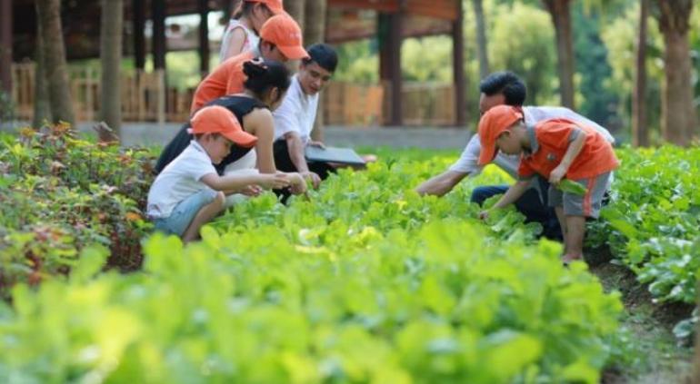 f:id:govietnam:20150508130010j:image