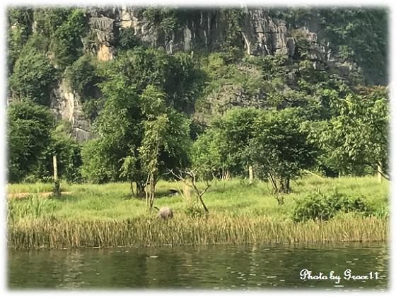 チャンアン景勝地☆田園風景をボートでクルーズ