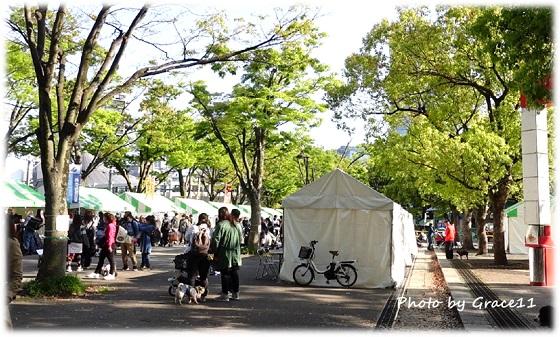 代々木公園 わんわんカーニバル2021