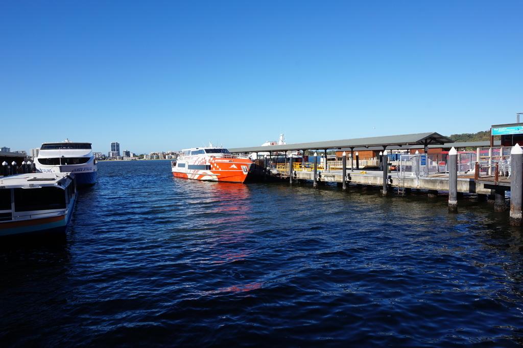 ロットネスト島 ロットネストエクスプレス バラックストリート ロットネスト島 日帰り旅行 高速船 船
