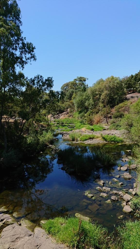 コバーグレイク公園 メルボルン 公園 コバーグ メリ川
