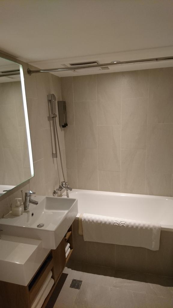 ロイヤルイン台北南西 ロイヤルイン 台北 ホテル 洗面所 お風呂 バスルーム