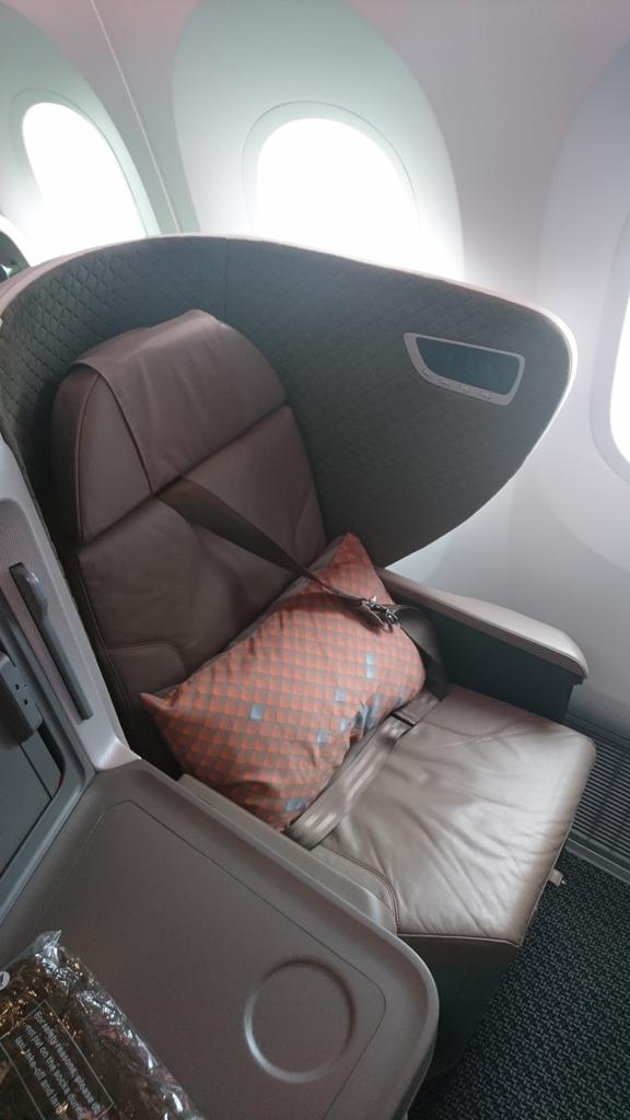 シンガポール航空 B787-10 ビジネスクラス SQ619 SQ618