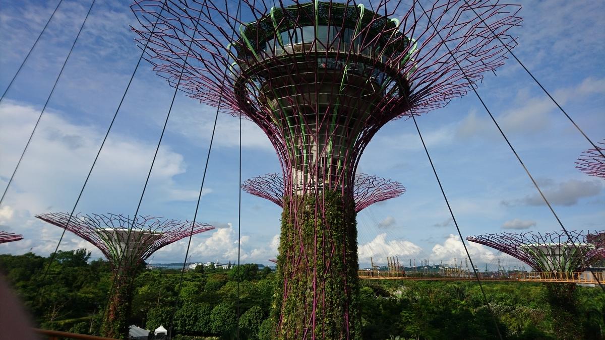 シンガポール ガーデンズ・バイ・ザ・ベイ スーパーツリー