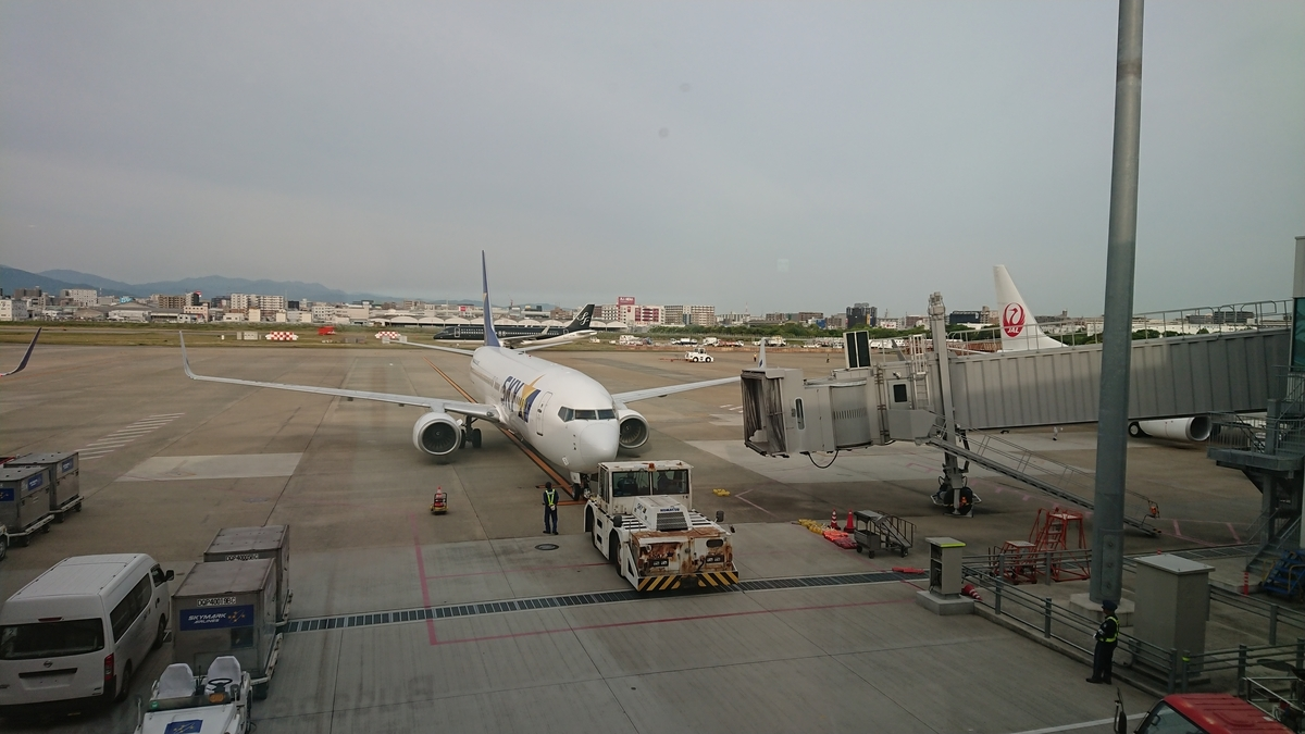 スカイマーク SKY501便 B737-800
