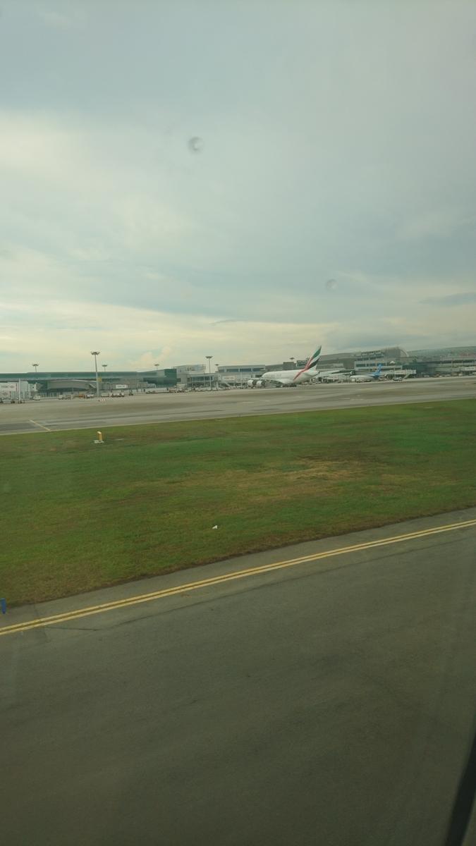 シンガポール航空 SQ619便 B787-10 ビジネスクラス