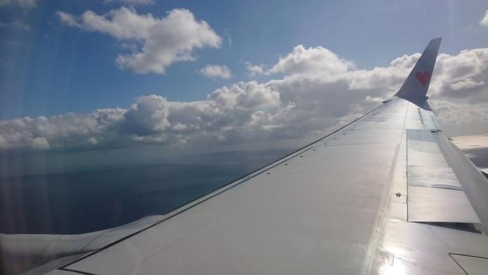 スカイマーク BC381便 SKY381便 タカガールジェット