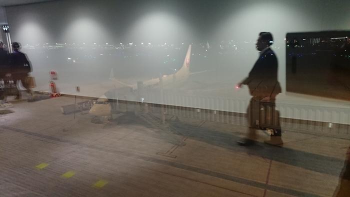 JAL 2061便 B737-800