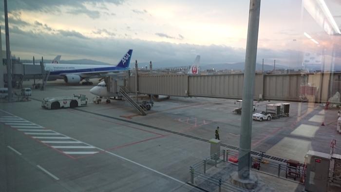 JAL JL2050便 B737-800