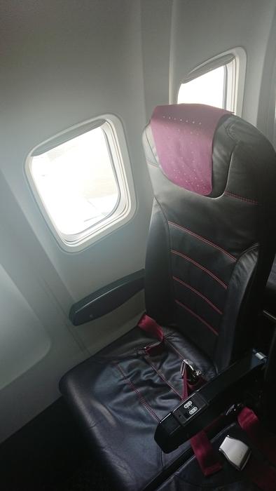 JAL 2050 B737-800
