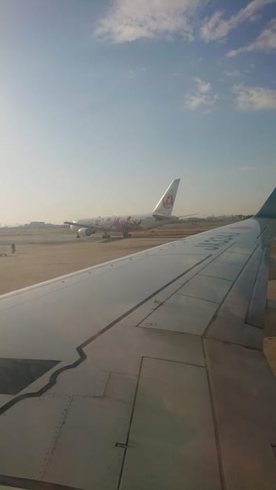JAL 2050便 B737-800