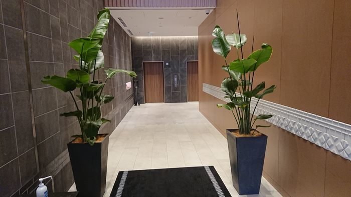 ダイワロイネットホテル博多冷泉